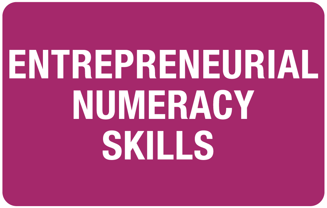 Entrepreneurial Numeracy Skills: A new programme to prepare student-entrepreneurs for success in business